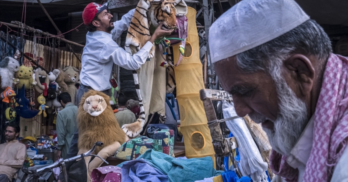 A street vendor hangs a stuffed tiger for sale, the mascott of Pakistan Muslim League-N (PMLN) party, headed by Nawaz Sharif, on a street in Lahore on May 01, 2013 in Lahore, Pakistan.</p>