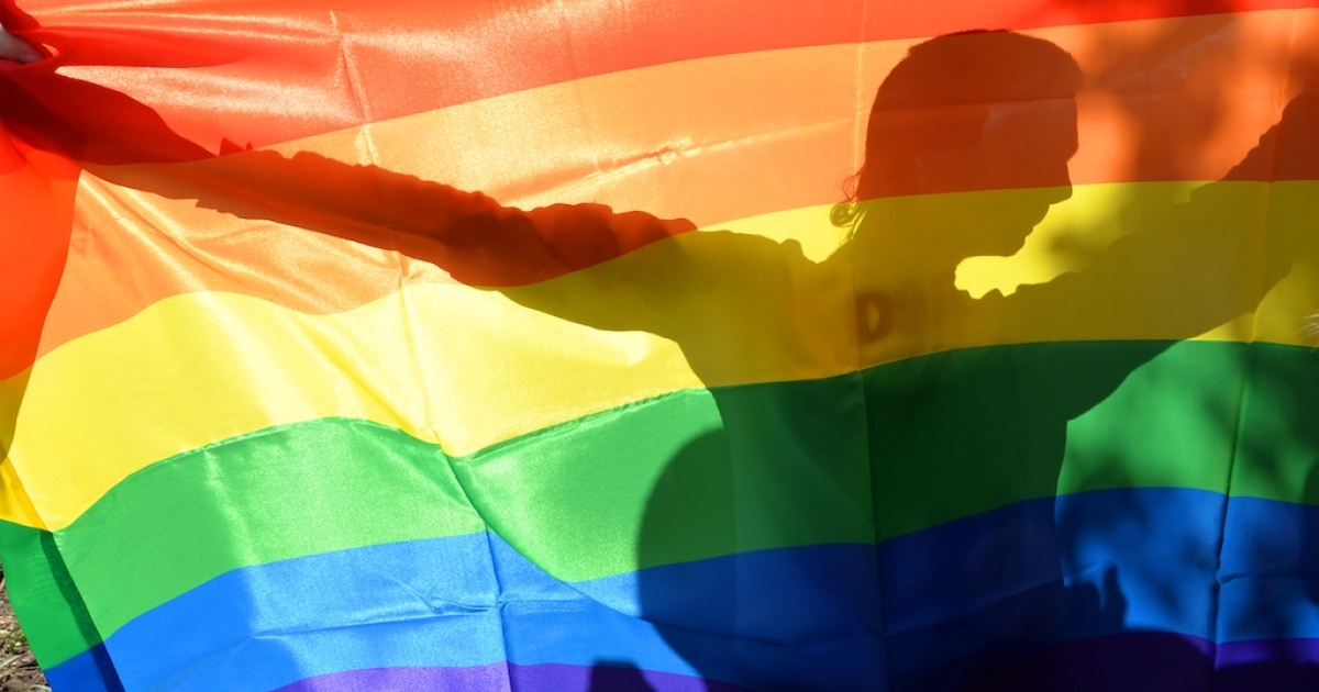 An activist's silhouette is seen through a rainbow flag during a Gay Parade in Kiev on May 25, 2013.</p>