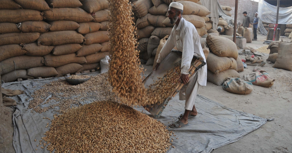 An Afghan laborer works at a peanut factory on the outskirts of Jalalabad.</p>
