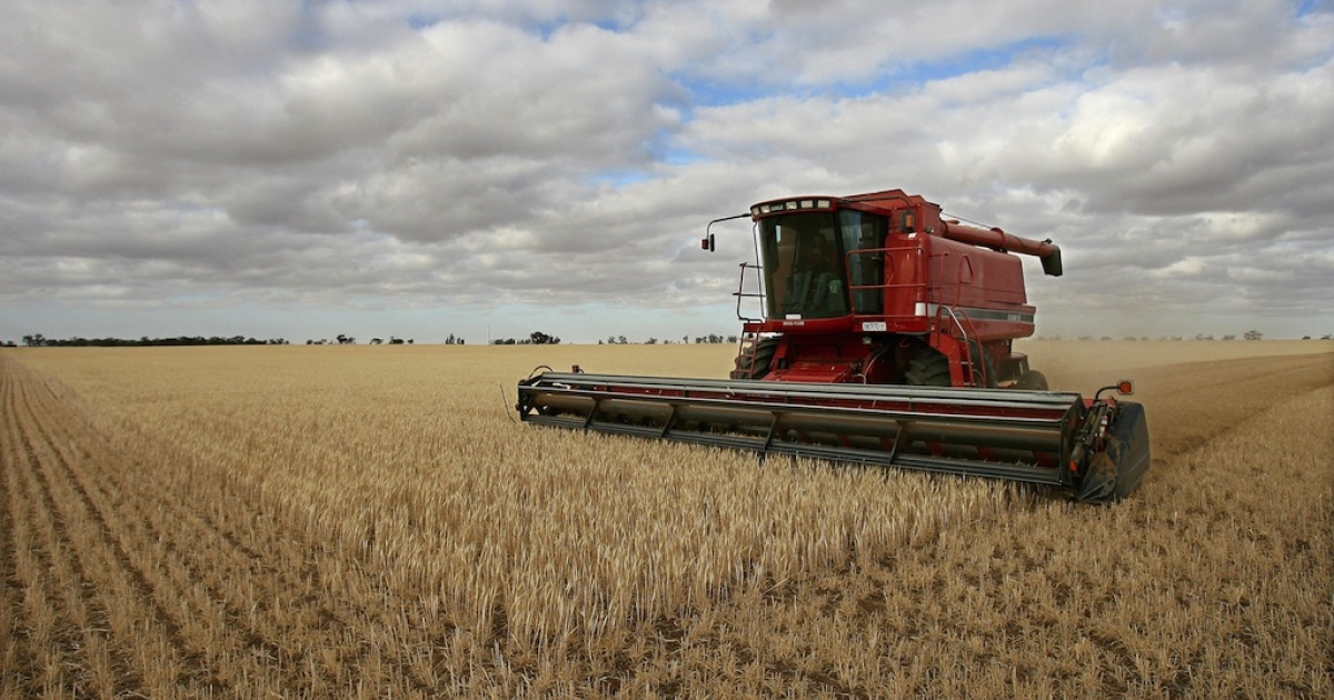 GrainCorp is Australia's biggest grain merchant.</p>