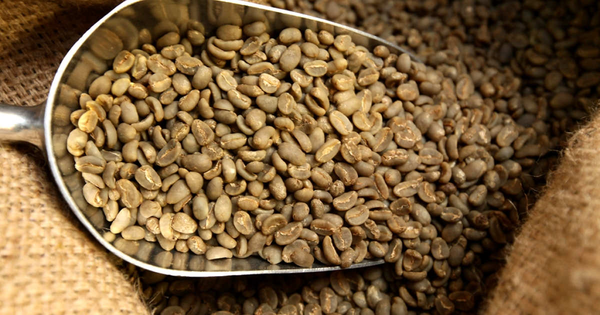 Raw coffee beans imported from Brazil lie in sacks in Berlin, Germany.</p>