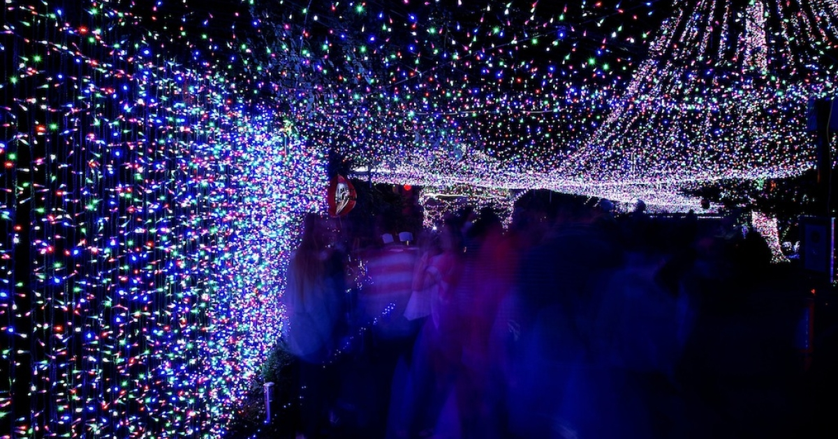 This picture taken on Dec. 19, 2011 shows a house in Canberra, Australia, decorated with Christmas lights.</p>