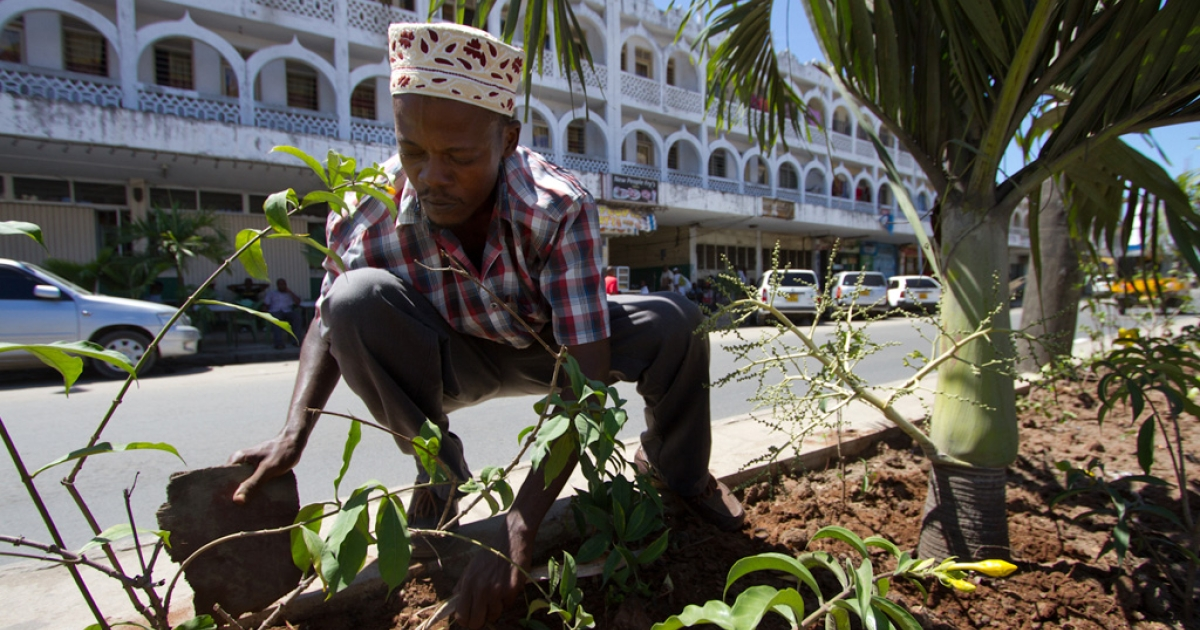 Abdrahaman Omar, 34, earns more than five times Kenya's minimum wage working as a gardner for Mombasa county.</p>
