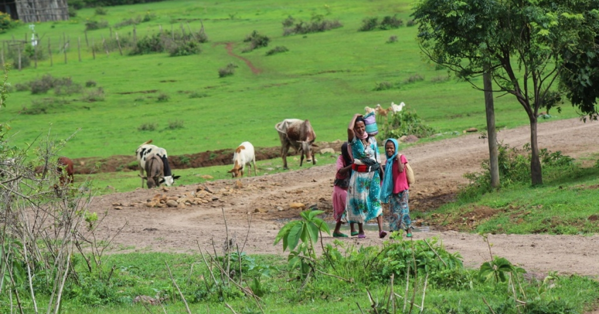 A woman and children return from the fields in Awra Amba.</p>