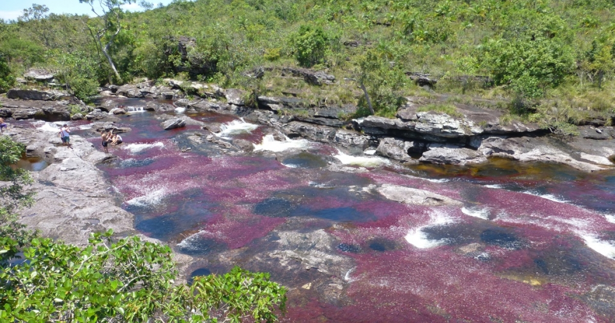Colombia's Caño Cristales has a series of gorgeous mountain streams that cascade over purple, red and yellow aquatic plants, turning the rivers into liquid rainbows.</p>