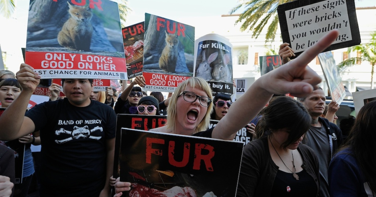 Animal rights groups and PETA stop in front of a Max Mara store on Rodeo Drive during an anti-fur demonstration urging Black Friday shoppers to stop buying fur-related products on November 25, 2011 in Beverly Hills, California.</p>