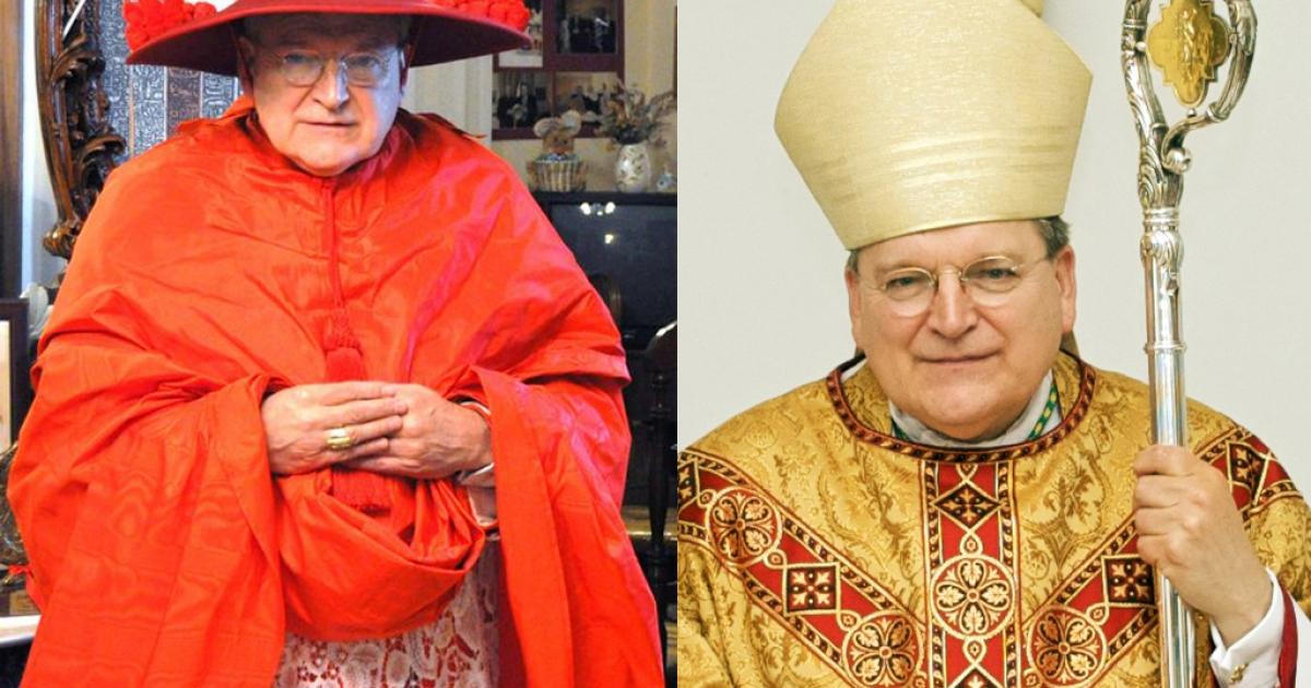 Cardinal Raymond Leo Burke</p>