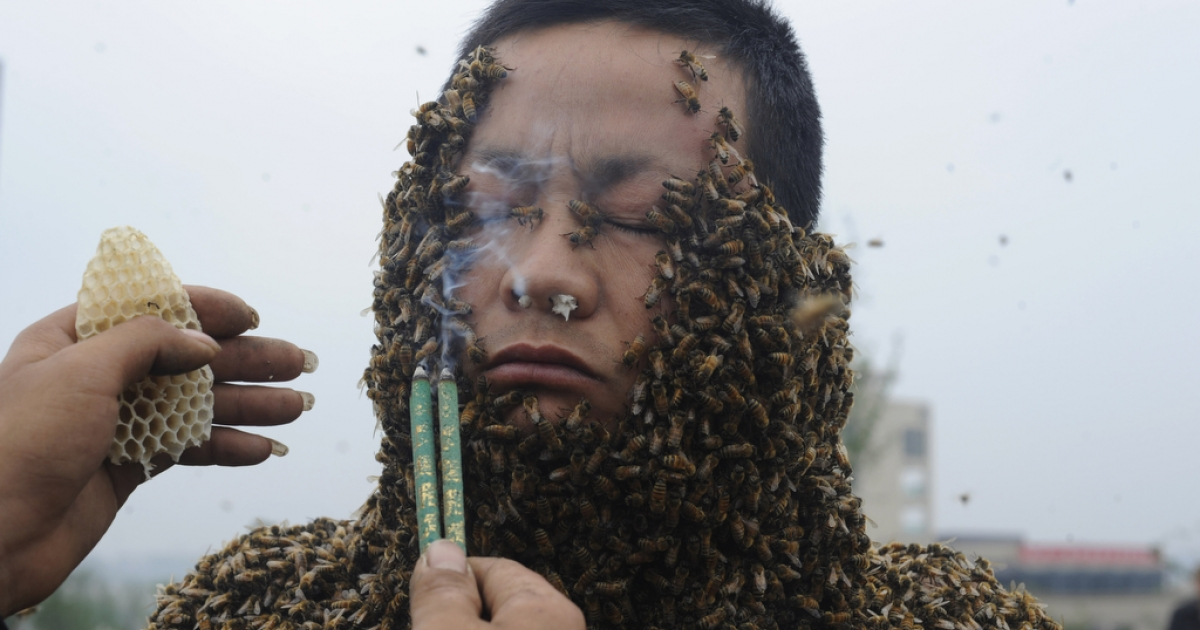 Chinese beekeeper She Ping is covered with bees during a previous stunt on April 18, 2012.</p>
