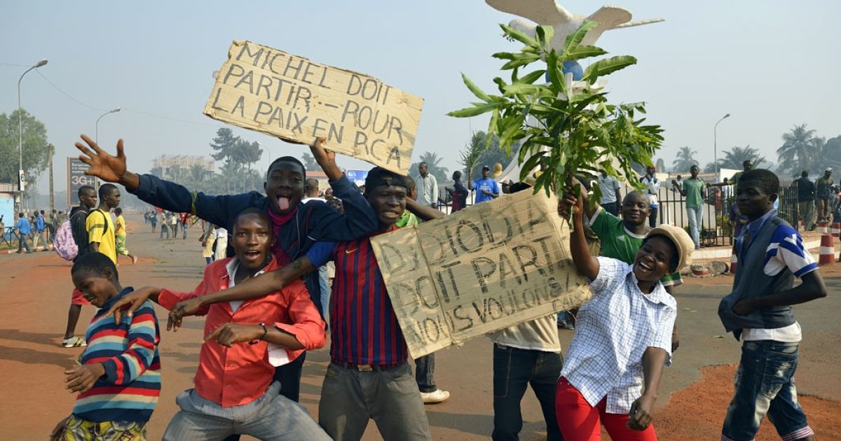 Anti-Seleka demonstrators pose with placards reading