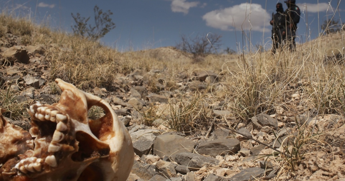 Mass graves, like this one in Juarez, have scarred Mexico from the Rio Grande southward.</p>