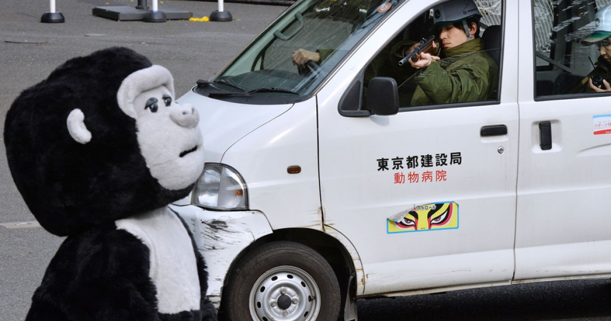 A zookeeper aims a tranquilizer gun towards an animal keeper dressed in a gorilla costume during a drill on what to do in the event of an animal escape at the Ueno zoo in Tokyo on Feb. 6, 2014.</p>