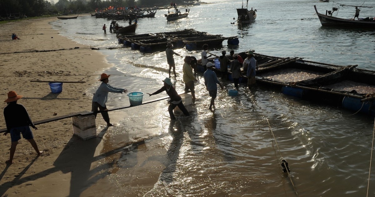 Migrant workers from Myanmar carry baskets of jellyfish ashore at Ban Nam Khem, on the country's western Andaman Coast, in 2009. Although they play a key role in Thailand's economy, migrants are now being targeted by the ruling junta.</p>