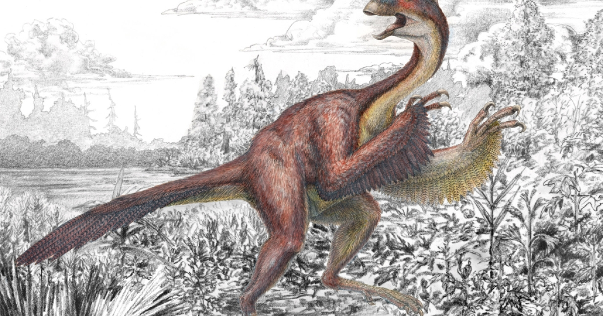 Dubbed Anzu wyliei, referring both to a mythological feathered demon and the name of a Carnegie museum trustee's grandson, the seven-foot-tall creature weighed about 500 pounds when it roamed western North America 66 to 68 million years ago.</p>