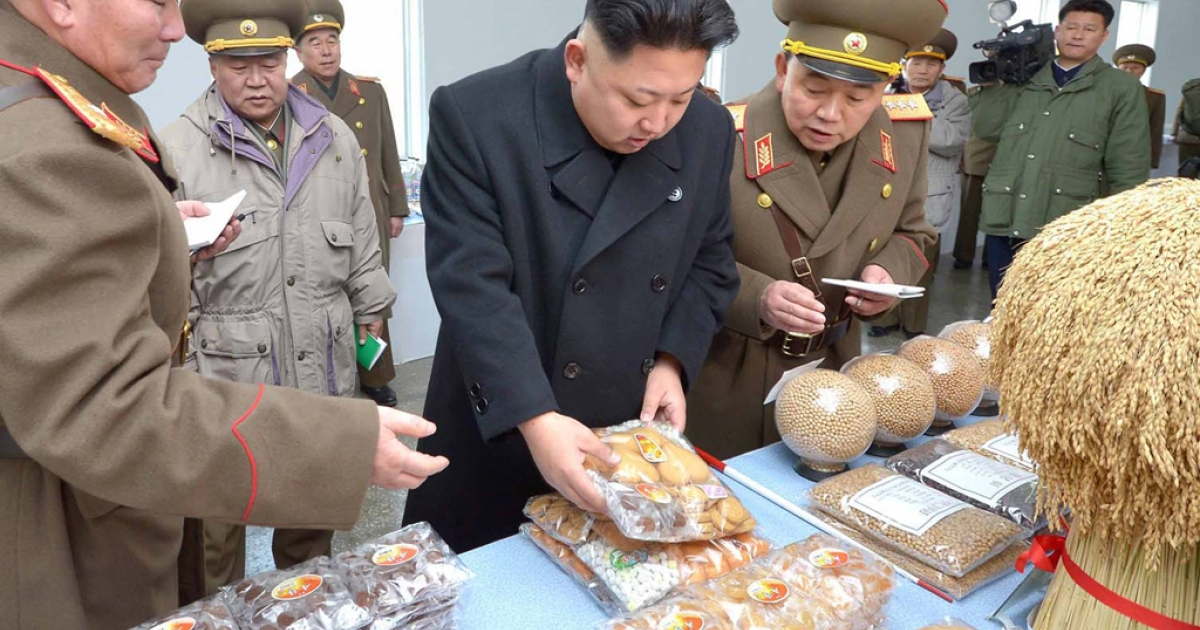 This undated picture released from North Korea's official Korean Central News Agency (KCNA) on January 12, 2014 shows North Korean leader Kim Jong Un inspecting the command of Korean People's Army Unit 534.</p>
