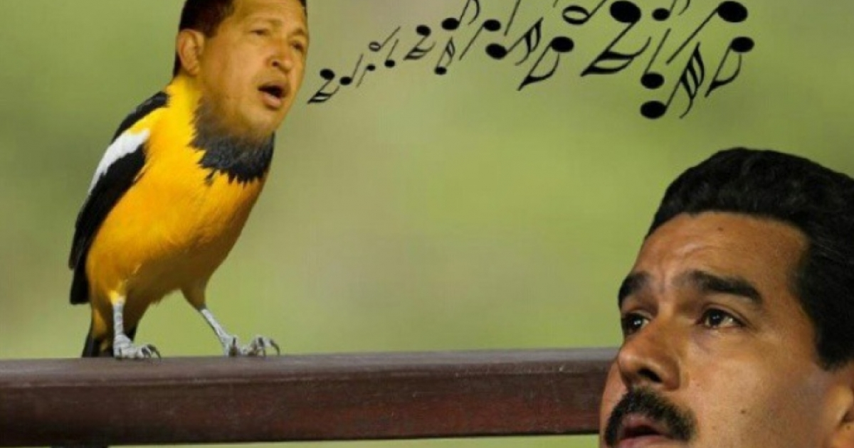 One of the many illustrated memes that zoomed around the web after Nicolas Maduro said the late Hugo Chavez had appeared to him as a chirping bird.</p>