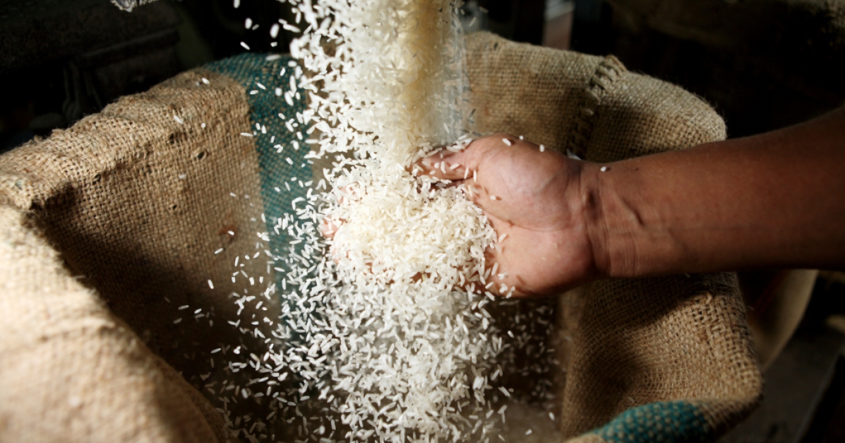 A Thai worker loads rice into a 50 kg bag at a rice mill on April 22, 2008, in Suphan-Buri, Thailand.</p>