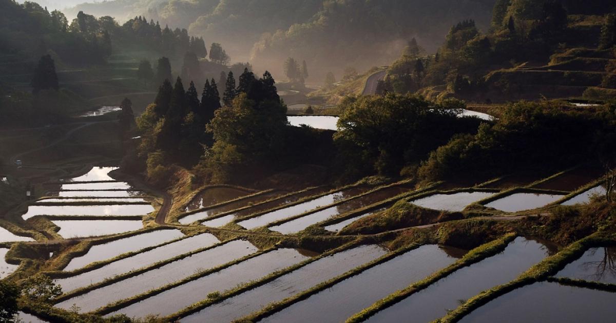 Rice terraces are seen at Matsudai Tanada region in Niigata, Japan. May 13, 2008.</p>
