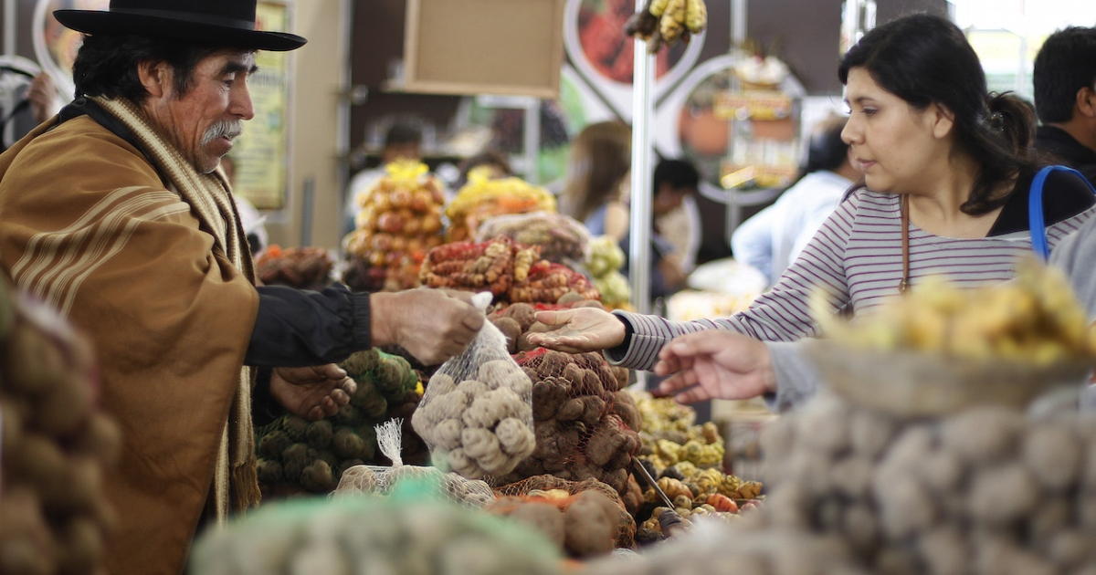 A Peruvian farmer sells Andean tubers during a gastronomy fair in Lima.</p>