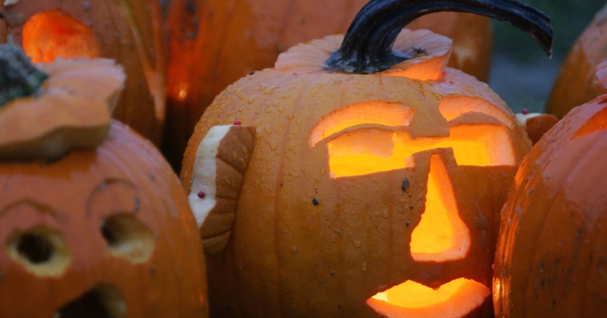 Carved Halloween pumpkins on display during the Pumpkin Festival in Boston, Mass., on Oct. 22, 2005.</p>