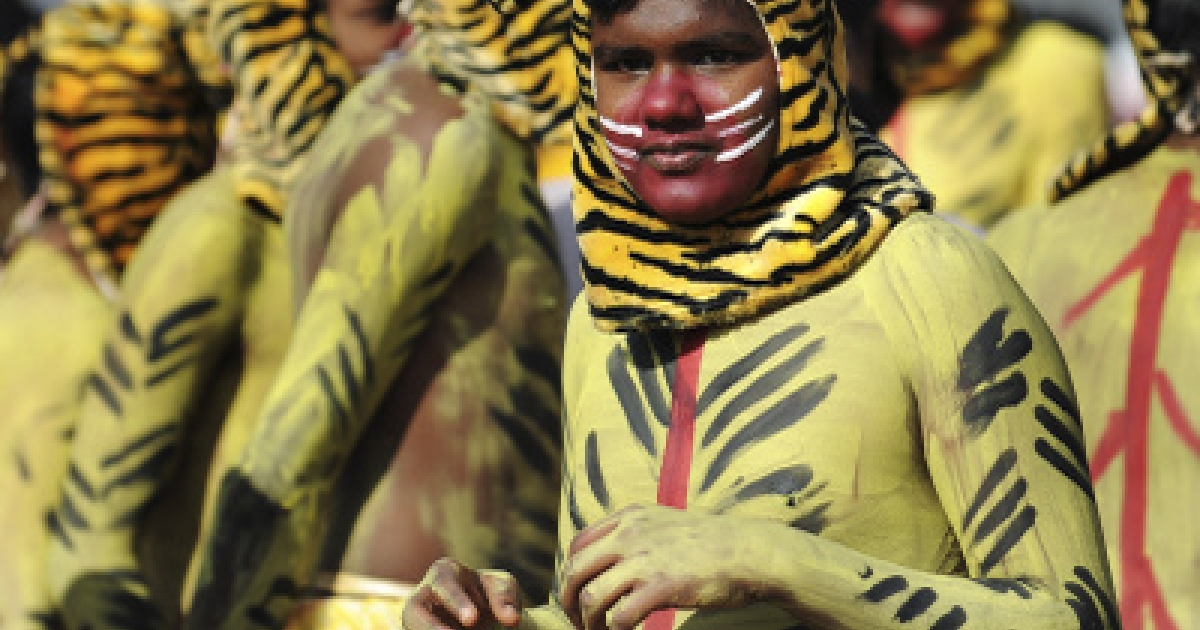 Indian schoolchildren dressed as tigers wait to perform during a Republic Day parade in Bangalore on January 26, 2011.</p>