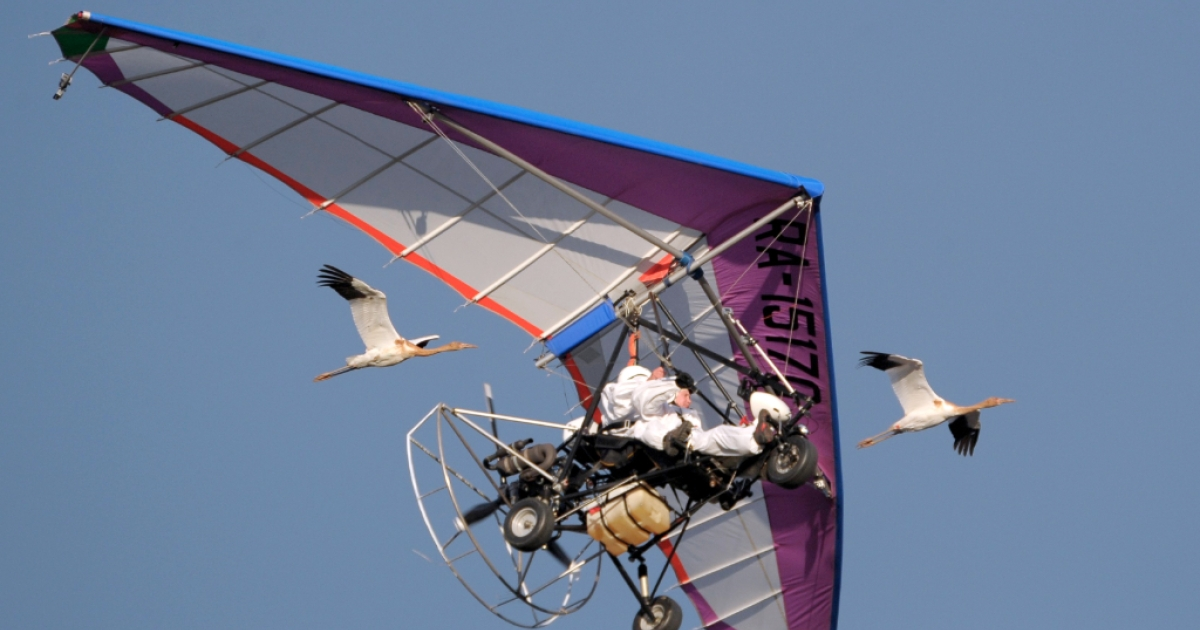 Russian President Vladimir Putin pilots a motorized hang glider while flying with cranes as he takes part in a scientific experiment as part of the 'Flight of Hope', which aims to preserve a rare species of cranes, on September 5, 2012. At the helm of a motorized hang glider that the birds have taken as their leader, Putin made three flights - the first to get familiar with the process, and two others with the birds.</p>