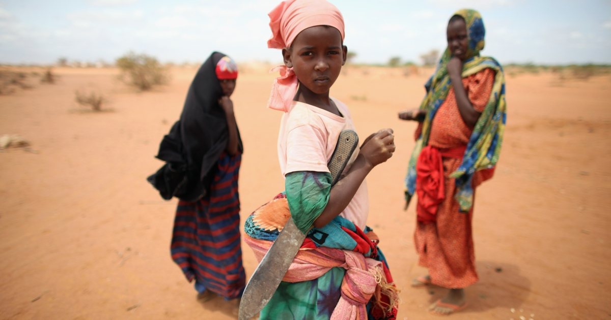 Somalian refugee children collect firewood on the edge of the Ifo refugee camp which makes up part of the giant Dadaab refugee settlement on July 22, 2011 in Dadaab, Kenya</p>
