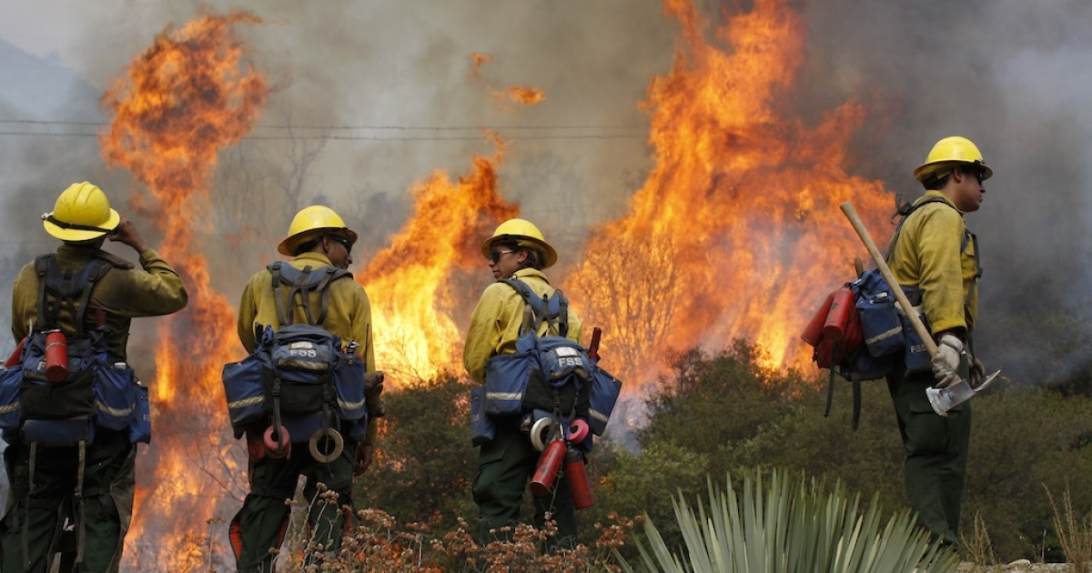 US Forest Service firefighters stand near flames at the Williams fire in the Angeles National Forest on September 4, 2012 north of Glendora, California.</p>