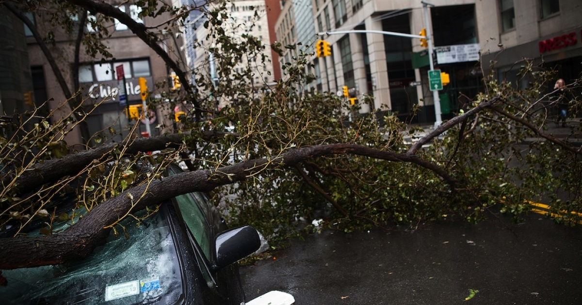 A car crushed by a tree in the financial district of New York City.</p>