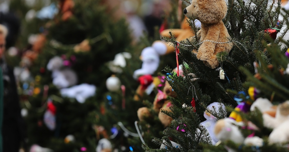 Stuffed animals decorate Christmas trees donated in memory of those killed at the Sandy Hook School December 16, 2012 in Newtown, Connecticut.</p>
