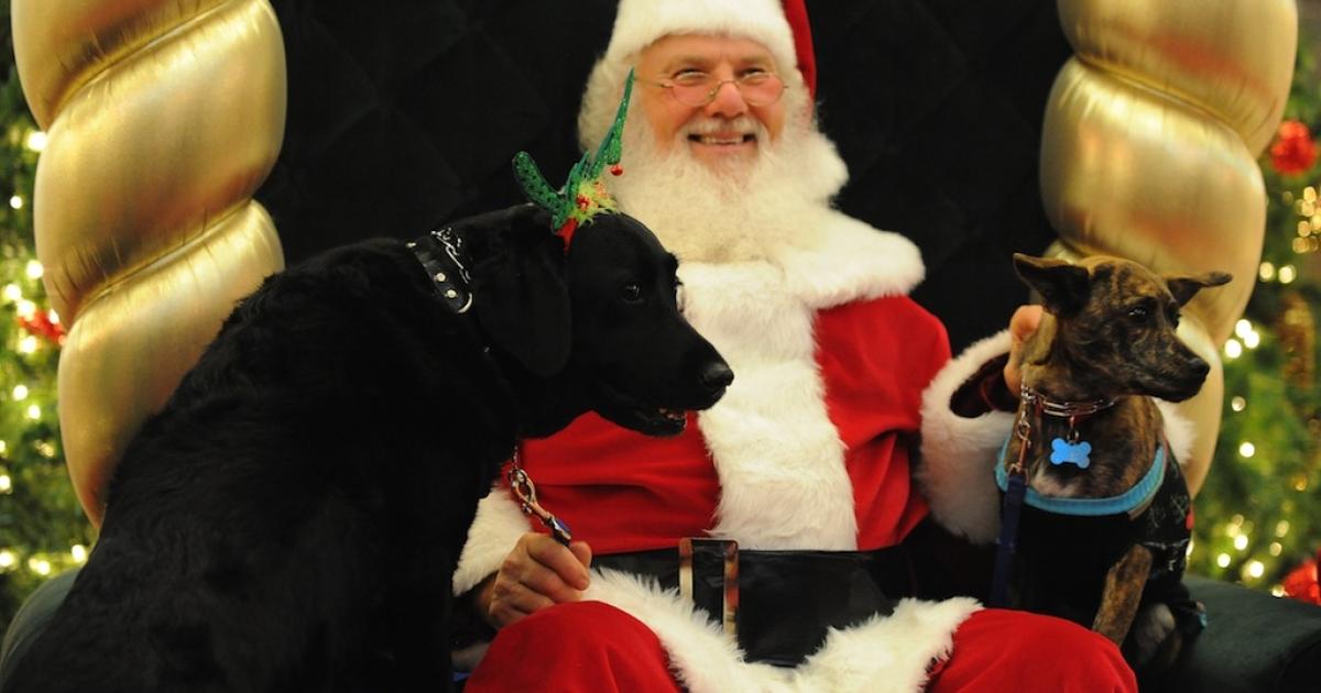 Debenhams is nixing Santa Claus this year. What's next, puppies?</p>