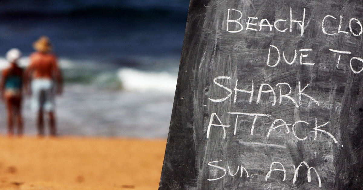 Avalon Beach near Sydney, Australia, is closed to the public after a shark attack on a surfer on March 1, 2009.</p>
