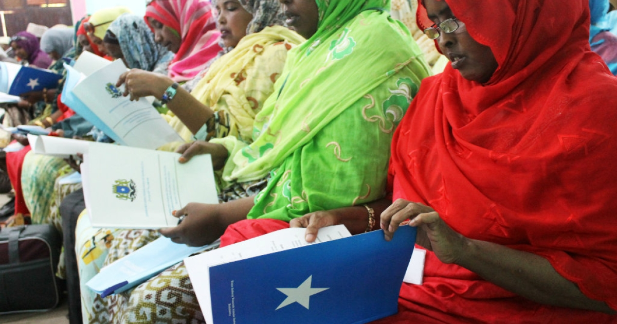 Somali delegates read the book of the constitution during the National Constituent Assembly meeting in Mogadishu. A special assembly is tasked with voting on a new constitution for war-torn Somalia as the corruption-riddled government approaches the end of its mandate next month.</p>