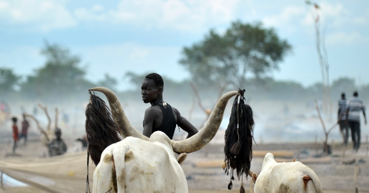 A herdsman from the Nuer tribe stands among his cattle at a cattle-camp, near Nyal, in South Sudan on Nov. 11, 2011. One of Africa's longest-running wars left this land in ruins and battling a bitter legacy that threatens prospects for peace — a stockpile of weapons spurring cattle raids and banditry.</p>
