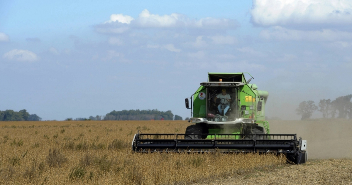A soybean harvest Apr. 11, 2012 in Argentina.</p>