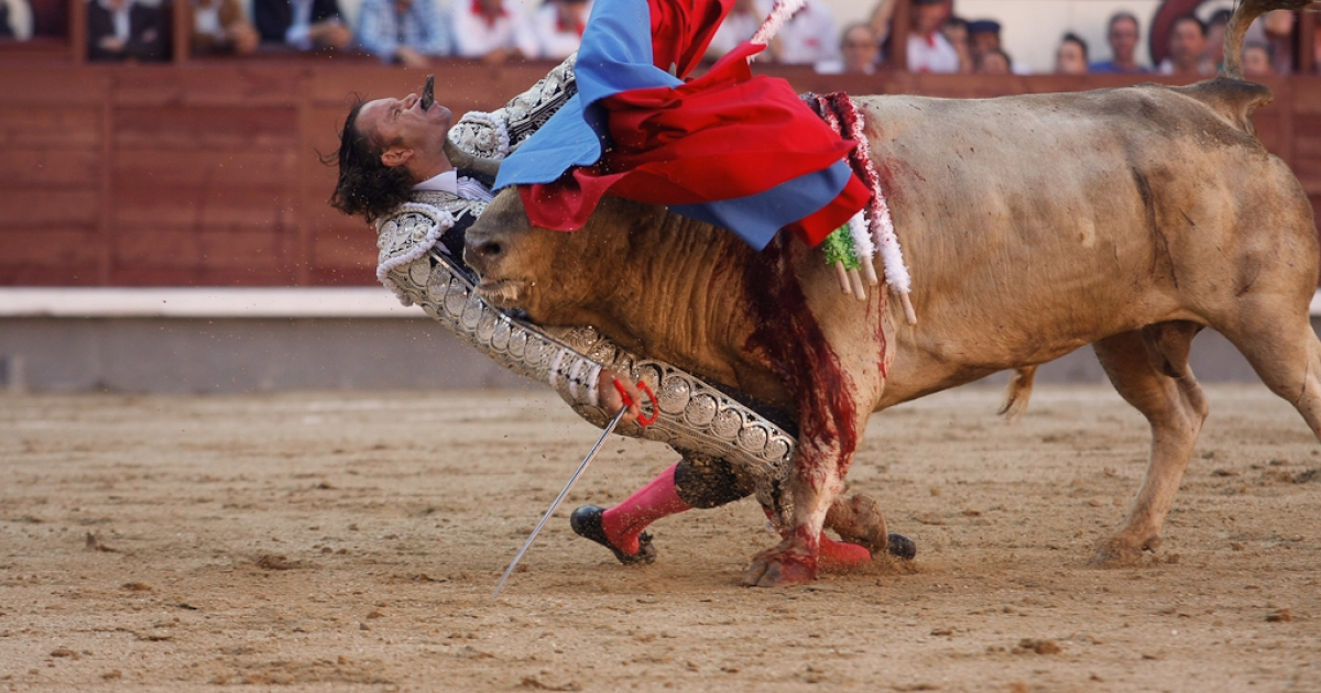 Spanish Bullfighter Julio Aparicio is gored by a bull during a bulfight of the San Isidro Feria at the Las Ventas bullring in Madrid, on May 21, 2010.</p>