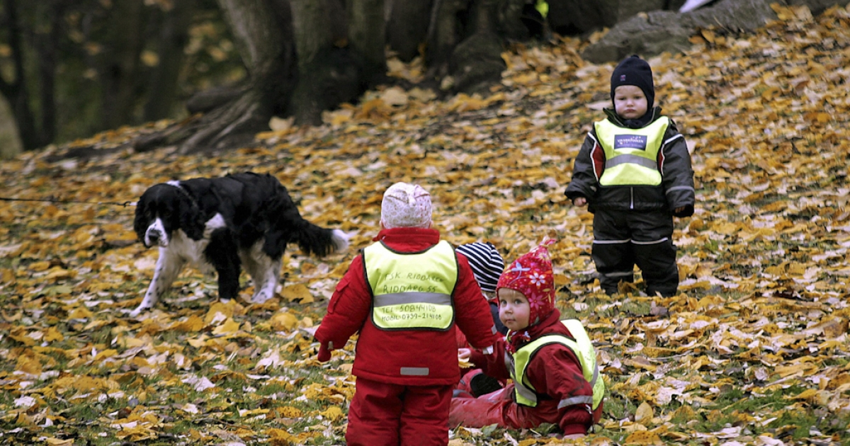 Swedish children from a kindergarden wear their obligatory traffic safety vests as they play in a Stockholm park. At the