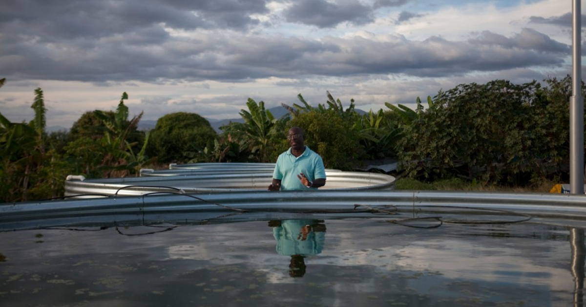 Valentin Ade, who runs a fishery for tilapia and shares the work and profits with local villages in Haiti.</p>