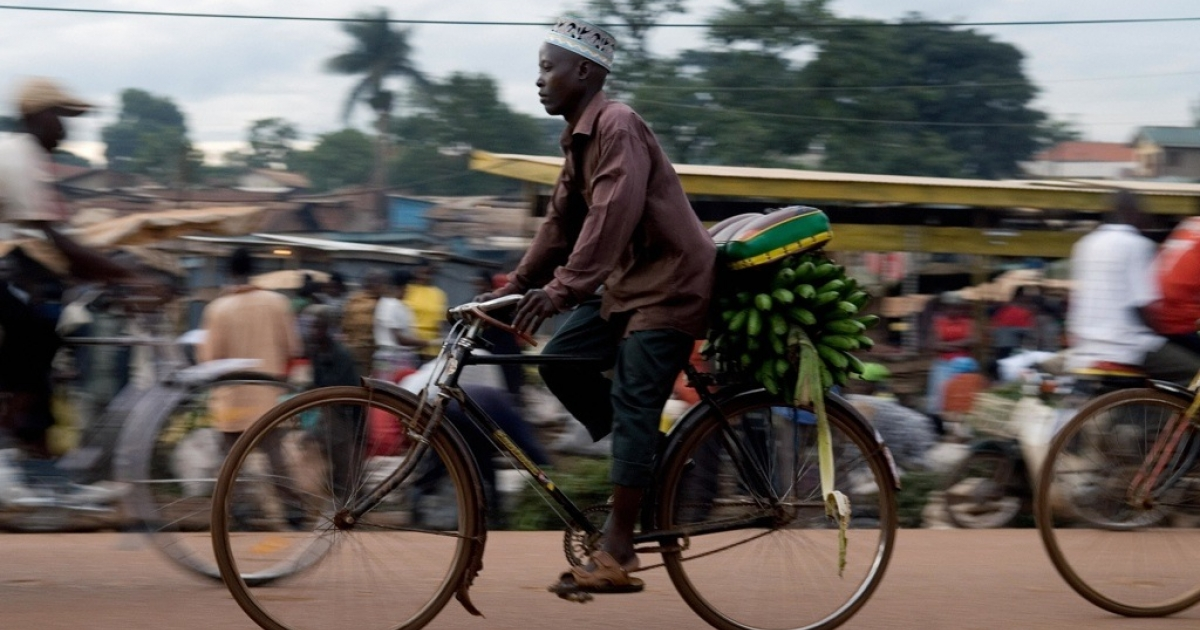 A man transporting bananas by bicycle at Bwaise market in Kampala, Uganda on April 30, 2008.</p>