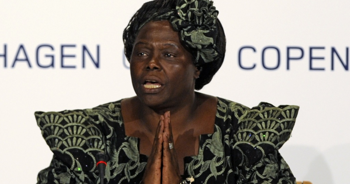 Nobel Peace Prize Laureate Wangari Maathai attending a meeting at the Bella center of Copenhagen at the COP15 UN Climate Change Conference in 2009.</p>