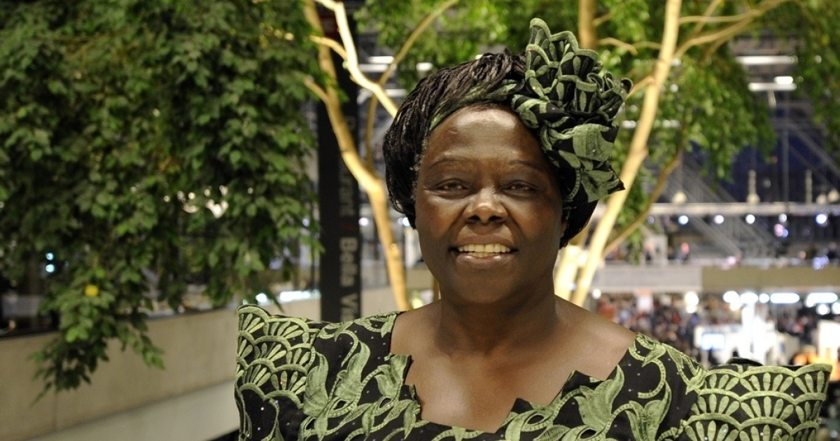 Nobel Peace Prize Laureate, Kenyan professor Wangari Maathai at the Bella Center in Copenhagen on December 15, 2009 at the United Nations Climate Change Conference.</p>
