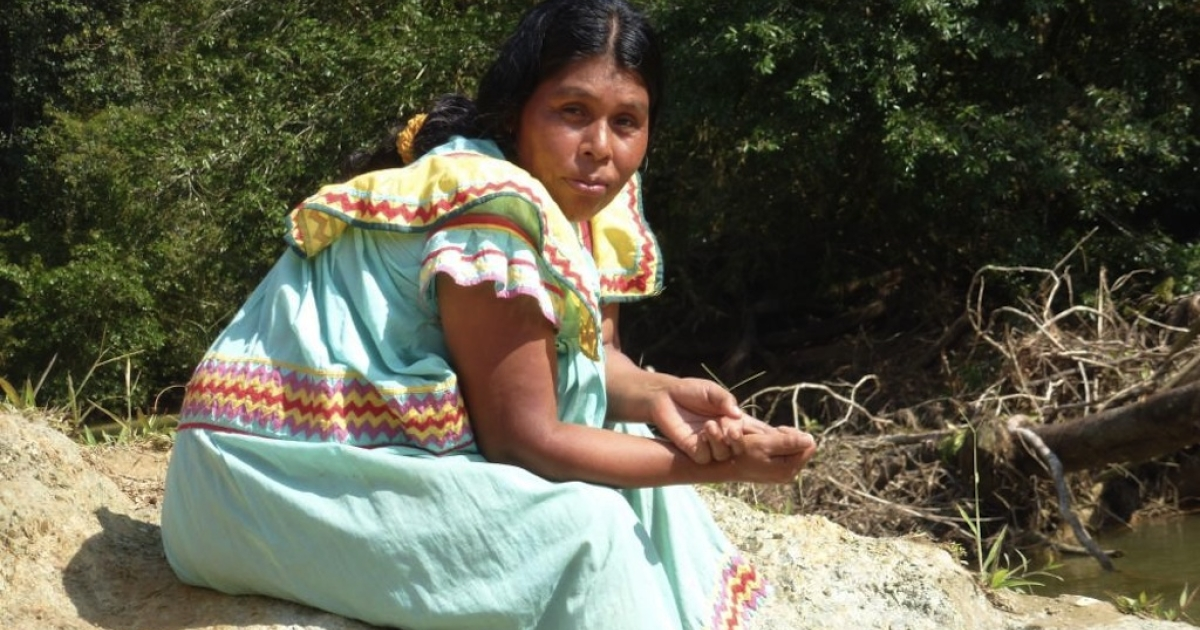 A woman from the Ngobe village of Nueva Lucha, one of several communities threatened by Canadian mining companies. The Ngobe are an indigenous people native to Panama.</p>
