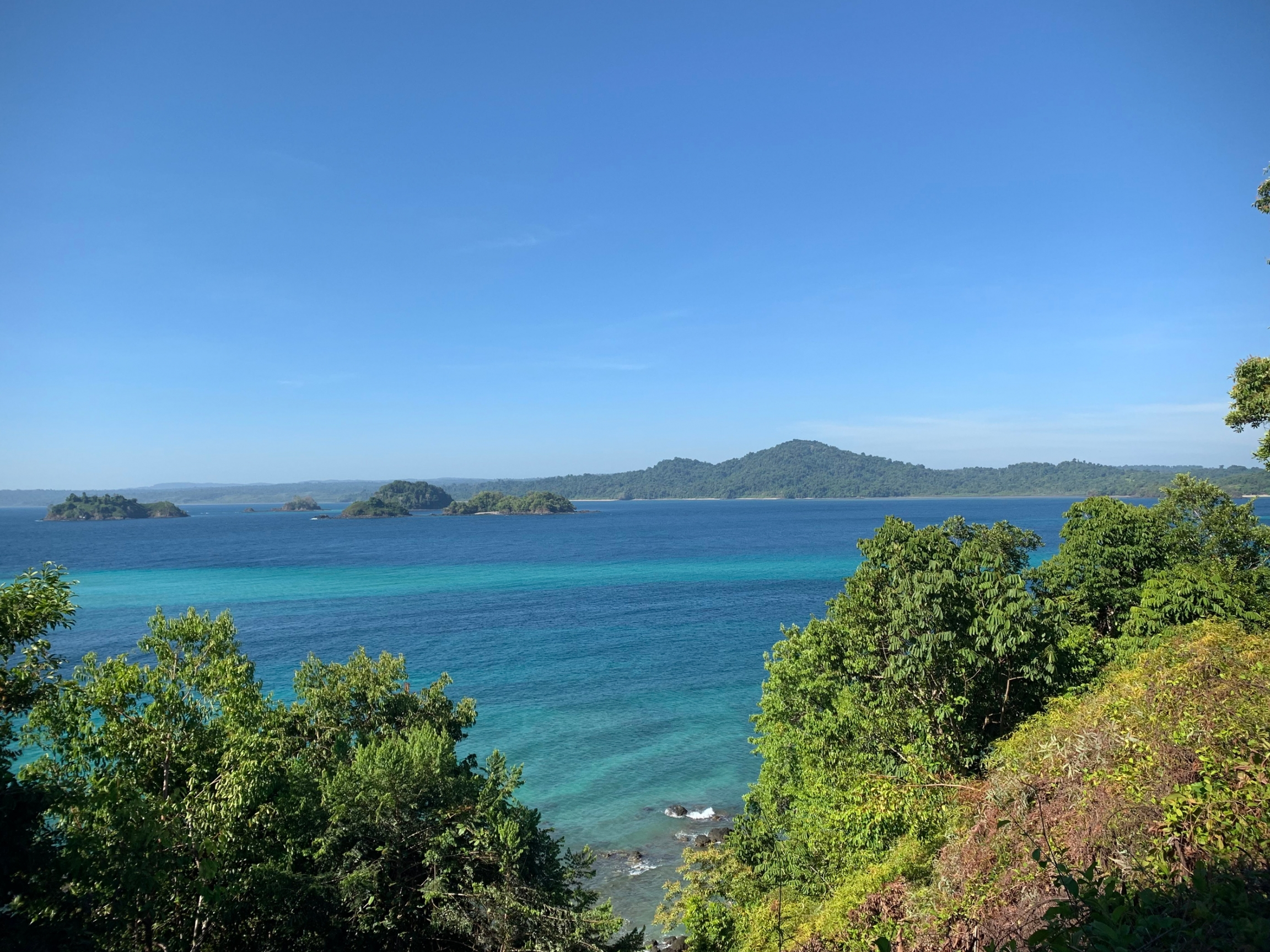 A view of the blue ocean from framed with the lush green forests of Coiba National Park.