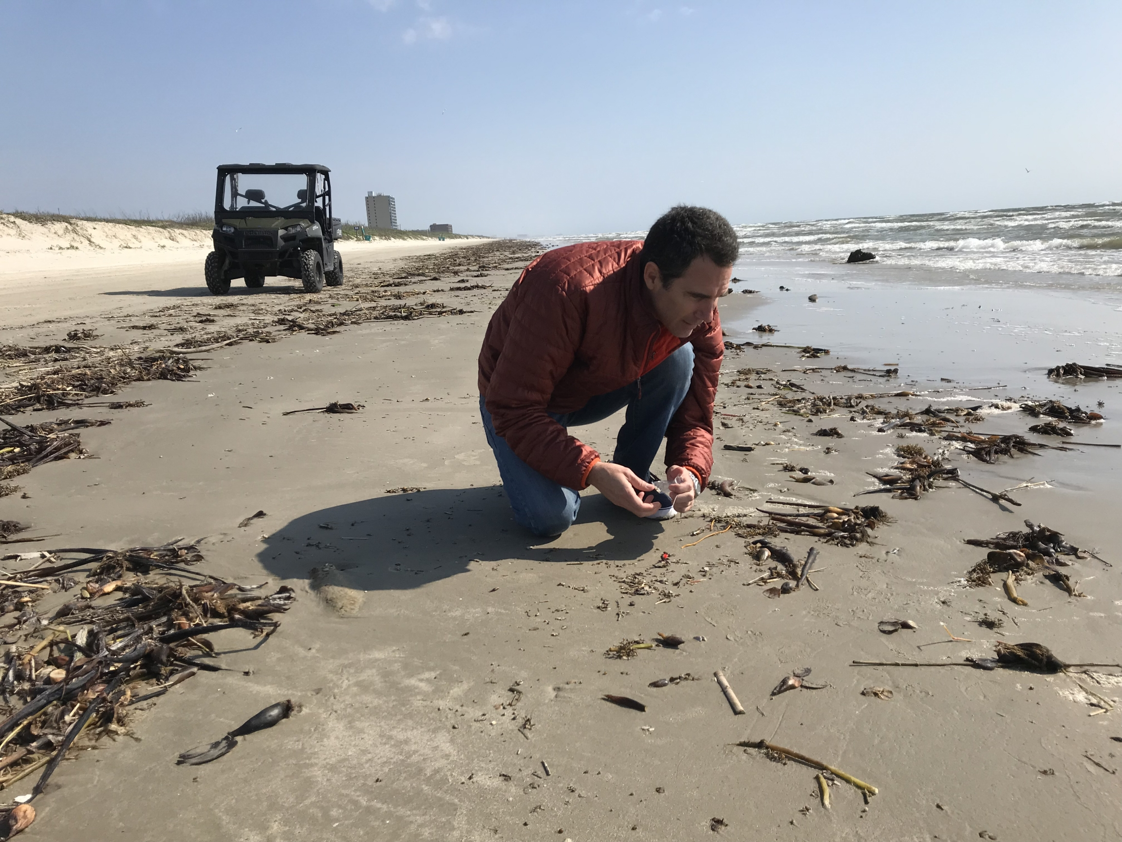 A man looks for micro-plastics on the beach.
