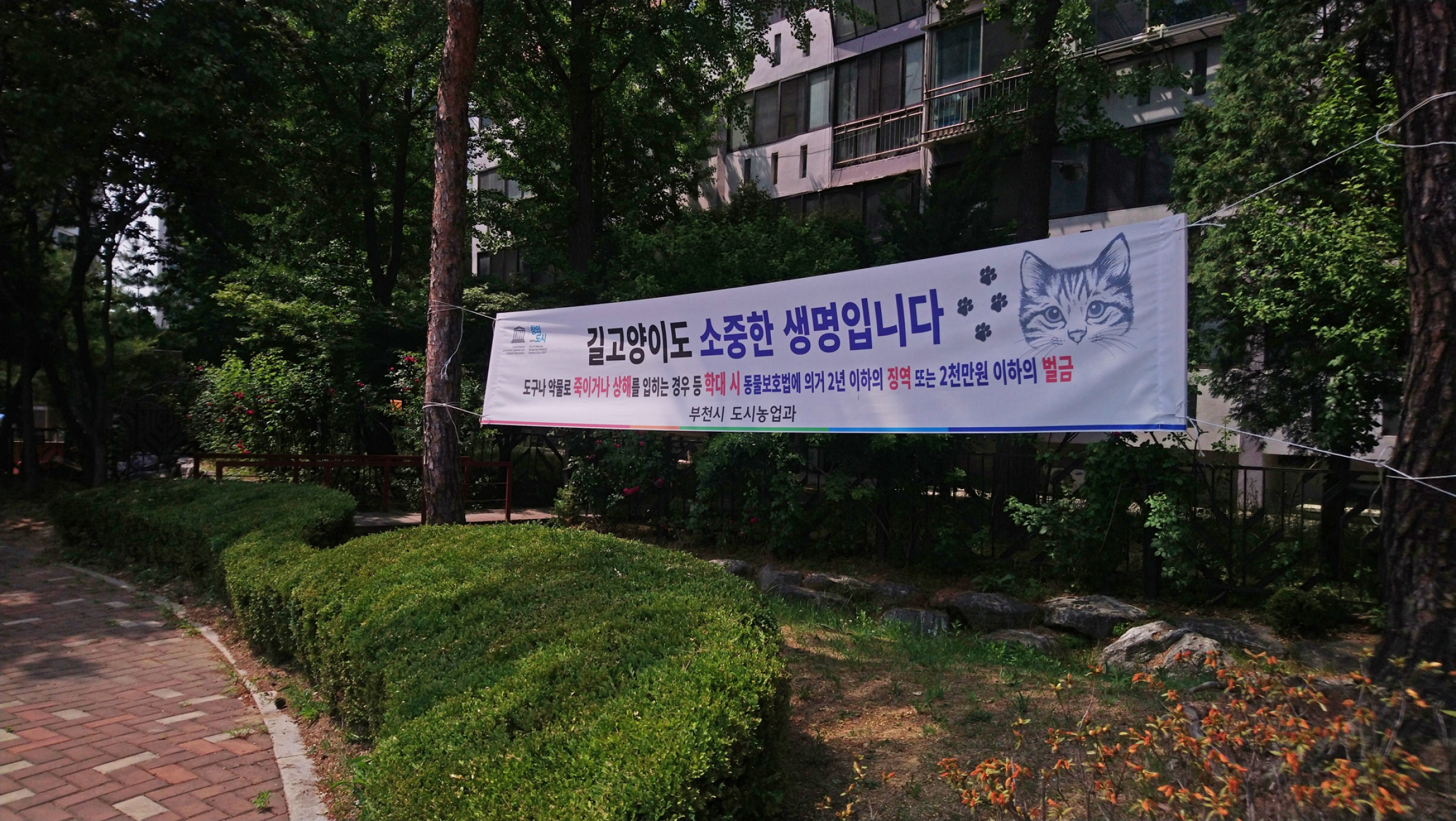banner with cat face and Korean lettering promoting cat coexistence