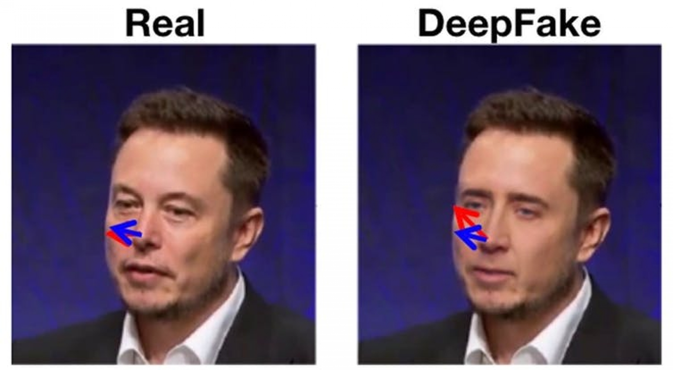 Nic Cage's head on Elon Musk's body