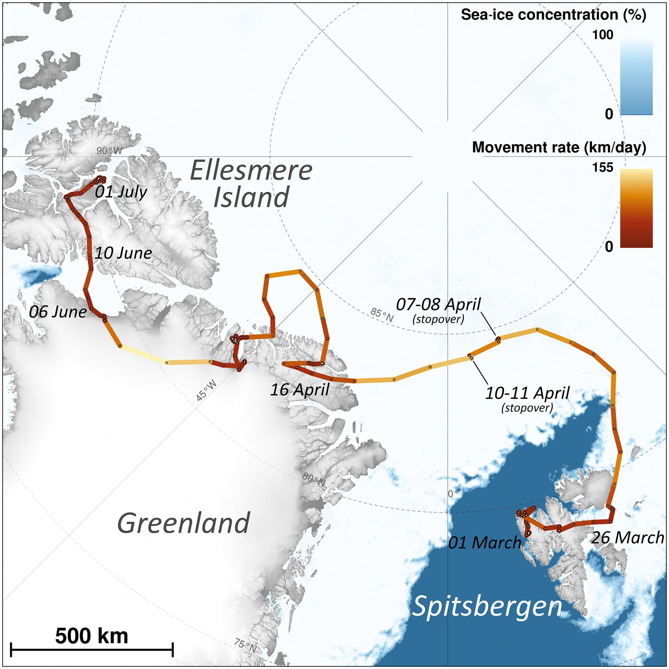 A map showing the arctic fox's route from Spitsbergen in Norway to Ellesmere Island in Canada.