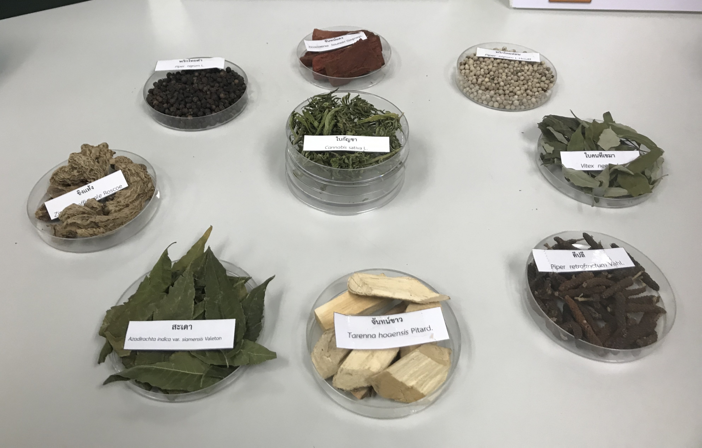 Ingredients used in a prototypical THC-infused powder invented by Thai scientists.