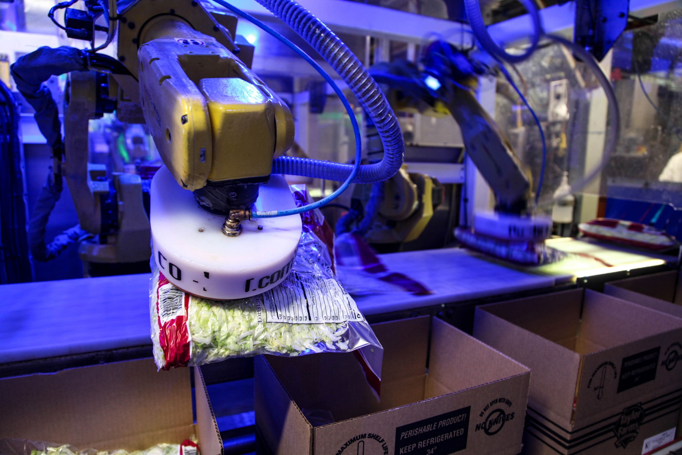 A robot uses suction to pick up a 5-lb back of lettuce and place it in a box. This task used to be done by workers.