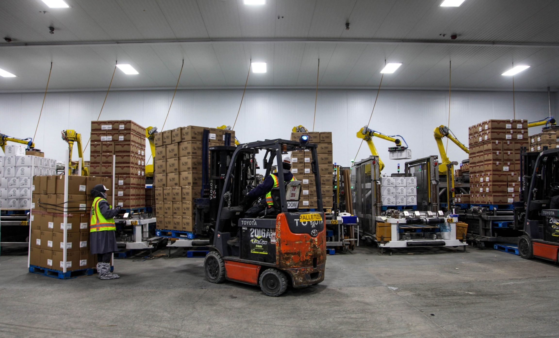 Robots stack 20-pound boxes into pallets at Taylor Farms on September 10, 2019.