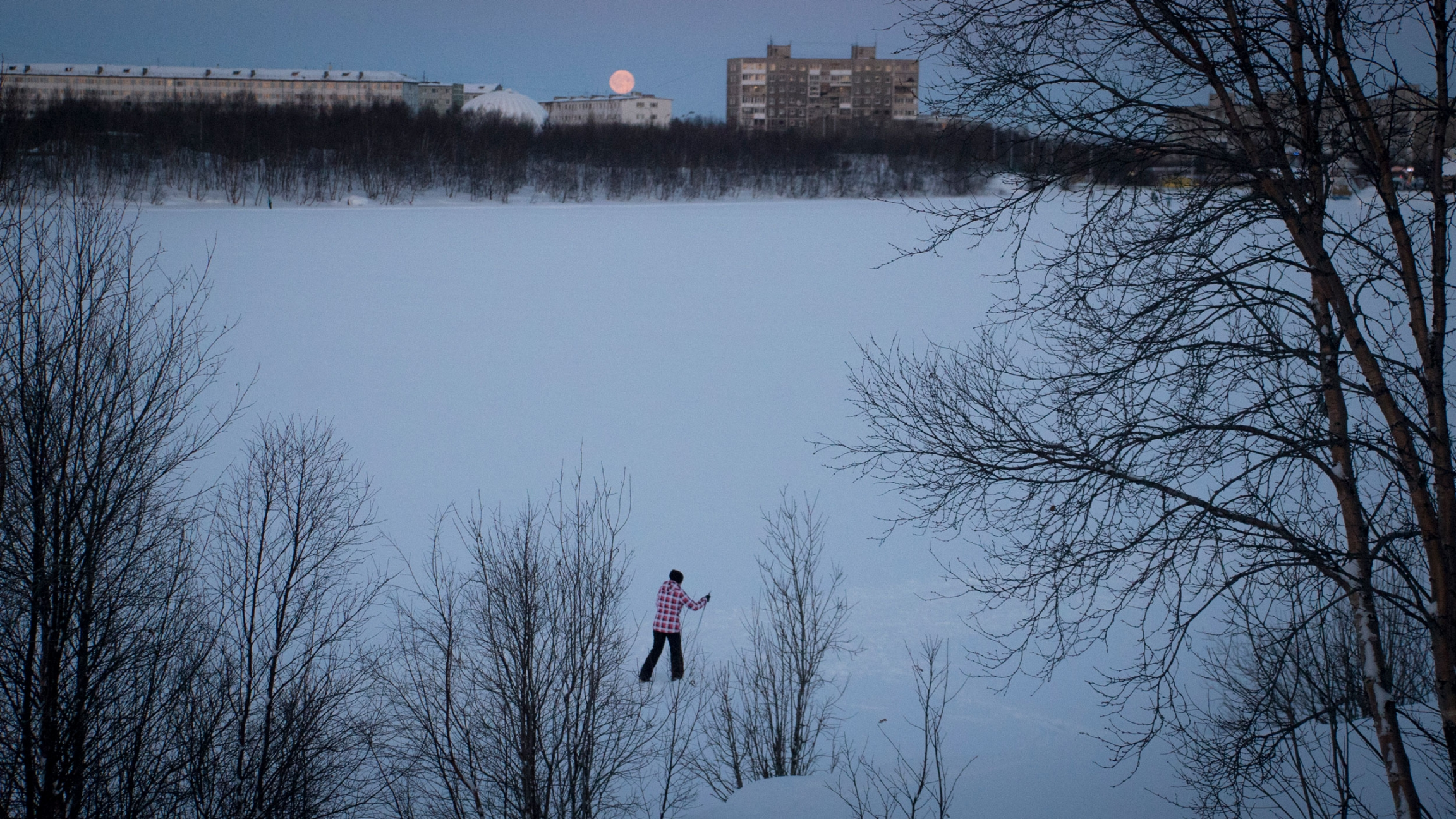 A person skis across a large snow-covered area with trees in the nearground and brick building and the moon in the background.